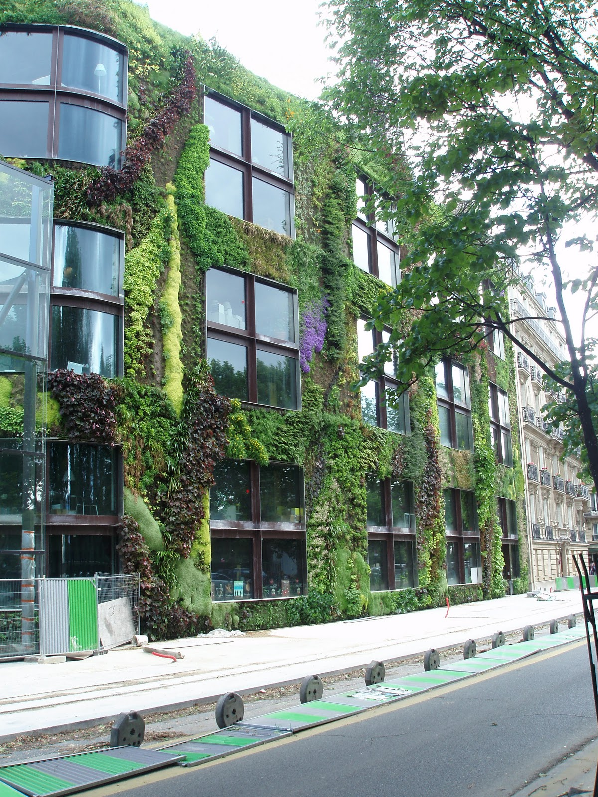 How to build your own living wall or vertical garden - How to build a living wall ...